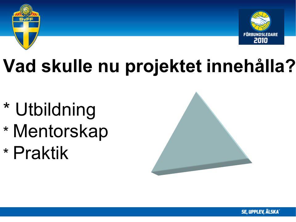 Vad skulle nu projektet innehålla * Utbildning * Mentorskap * Praktik