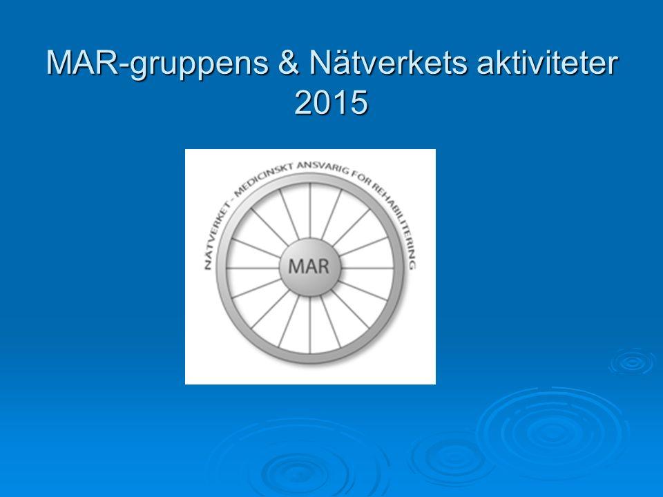 MAR-gruppens & Nätverkets aktiviteter 2015