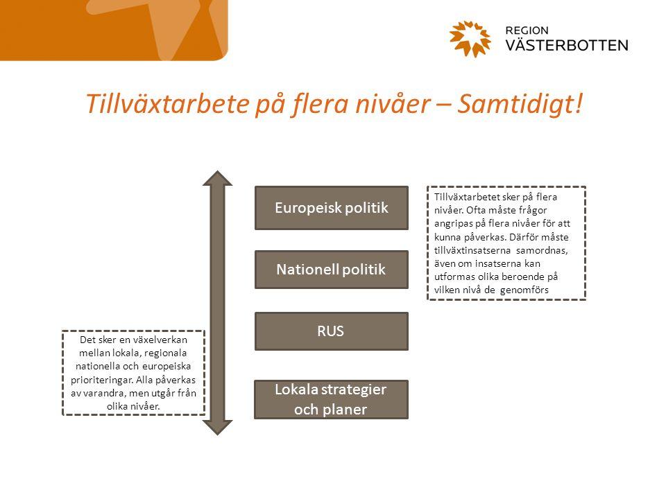 Delstrategier 1) Samhällen som inkluderar och utvecklar människor2) Miljödriven utveckling3) Strukturer för innovation4) Platsbaserad näringslivsutveckling5) Investeringar i utbildning och kompetens6) En tillgänglig och utåtriktad regionIndikatorer för regional utveckling