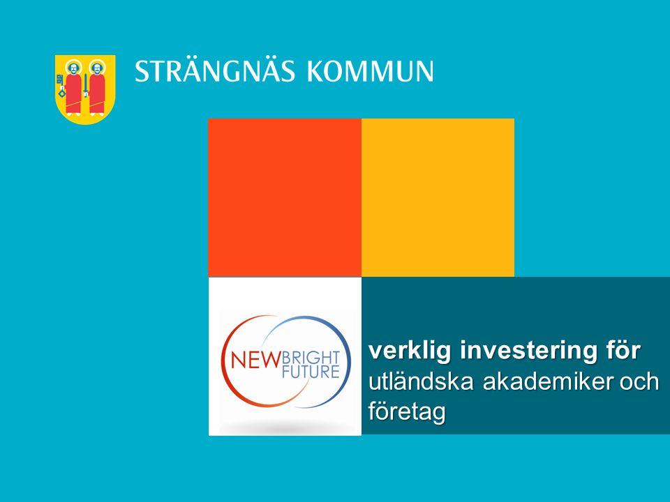 utländska akademiker och företag verklig investering för