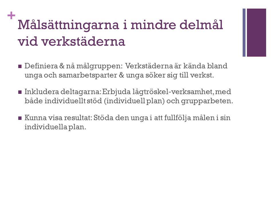 + Exempel från verkstäderna Raseborg: Koordinerar mångprofessionellt arbete; Har stationerad socialarbetare och regelbundna besök från AN- byrån.