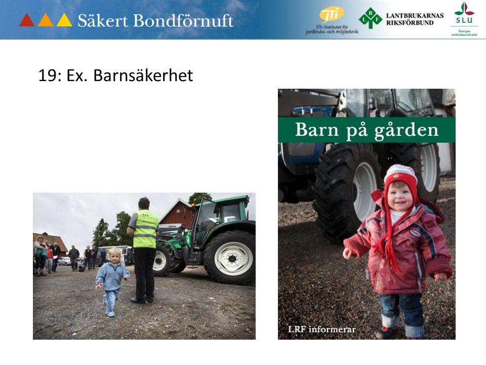 19: Ex. Barnsäkerhet