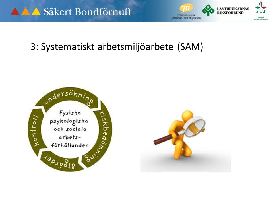 3: Systematiskt arbetsmiljöarbete (SAM)