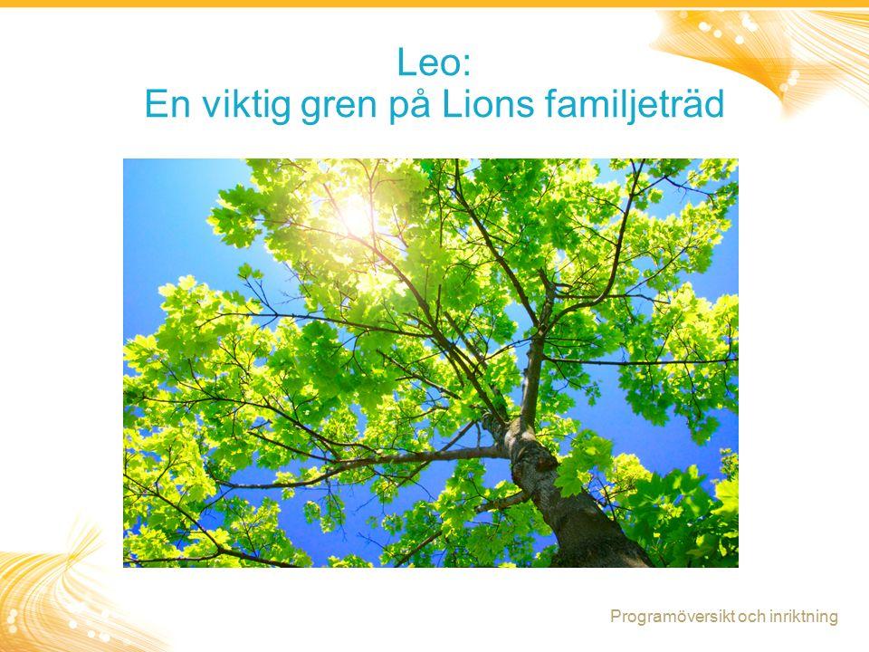 12 Leo: En viktig gren på Lions familjeträd Programöversikt och inriktning