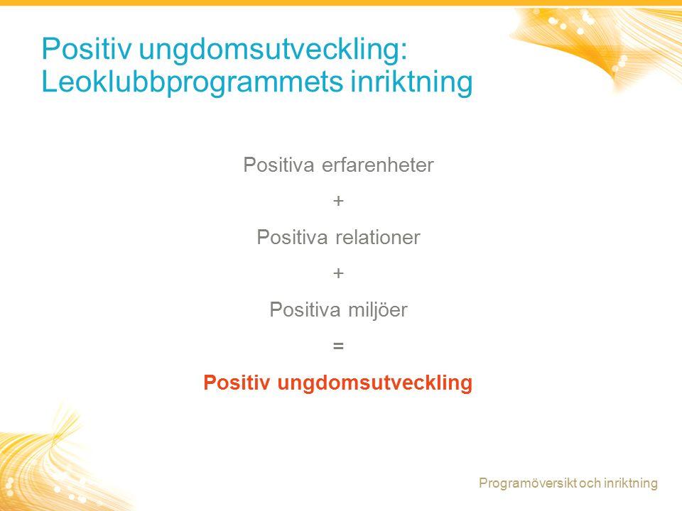 6 Positiv ungdomsutveckling: Ett program med en tillgångs- baserad inriktning Programöversikt och inriktning