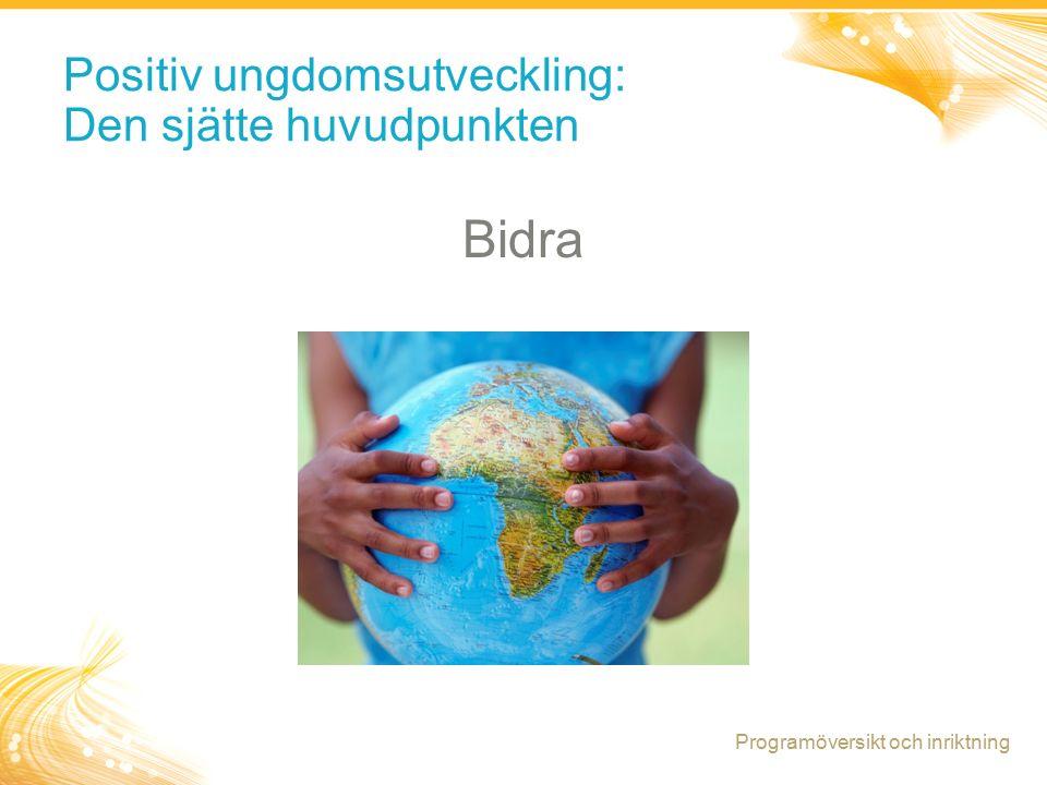 8 Positiv ungdomsutveckling: Den sjätte huvudpunkten Bidra Programöversikt och inriktning