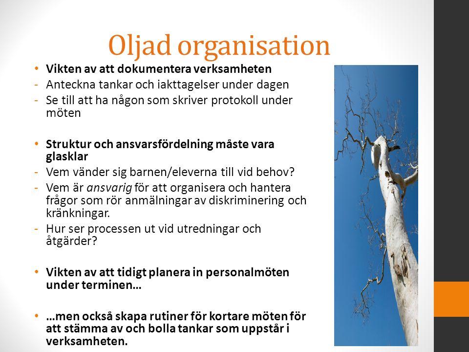 Oljad organisation Vikten av att dokumentera verksamheten -Anteckna tankar och iakttagelser under dagen -Se till att ha någon som skriver protokoll un