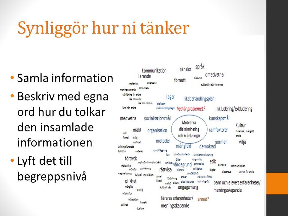 Synliggör hur ni tänker Samla information Beskriv med egna ord hur du tolkar den insamlade informationen Lyft det till begreppsnivå