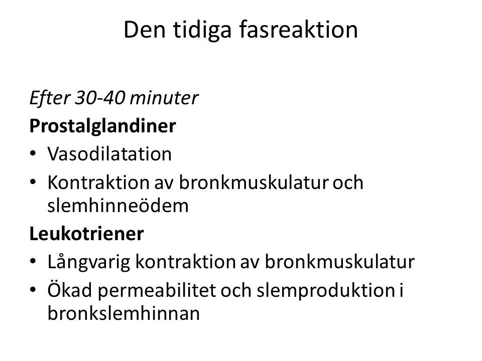 Den tidiga fasreaktion Efter 30-40 minuter Prostalglandiner Vasodilatation Kontraktion av bronkmuskulatur och slemhinneödem Leukotriener Långvarig kontraktion av bronkmuskulatur Ökad permeabilitet och slemproduktion i bronkslemhinnan