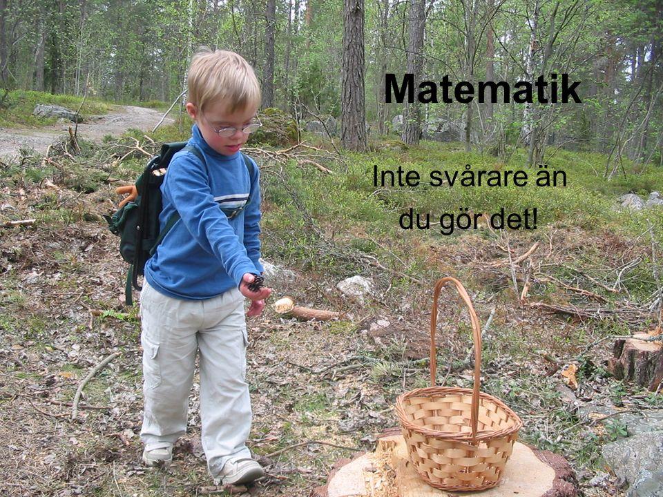 Aritmetik – att räkna begrepp; fler/färre, dela lika, flera gånger. Lika och olika