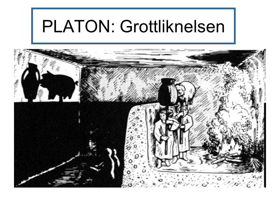 PLATON: Grottliknelsen