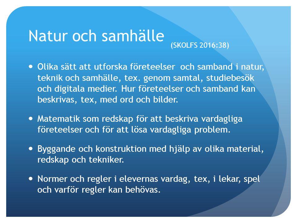Natur och Samhälle (SKOLFS 2016:38) Etnicitet, könsroller, kroppsideal och konsumtion samt kritisk granskning av hur dessa företeelser framställs i medier i populärkultur.
