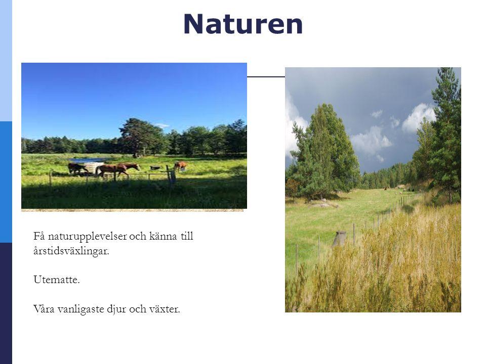 Naturen Få naturupplevelser och känna till årstidsväxlingar.