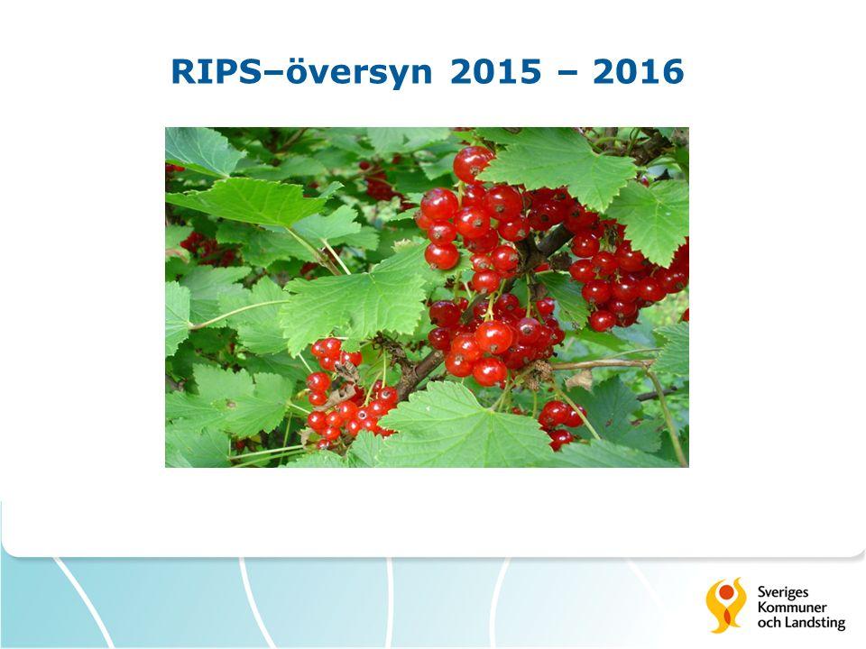 RIPS–översyn 2015 – 2016