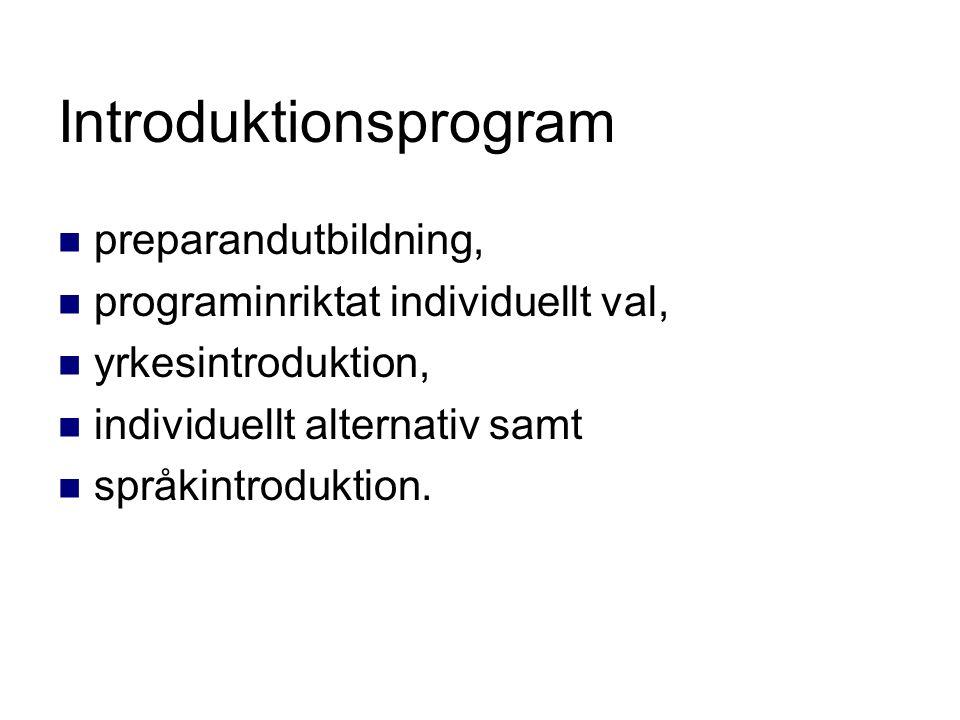 Introduktionsprogram preparandutbildning, programinriktat individuellt val, yrkesintroduktion, individuellt alternativ samt språkintroduktion.