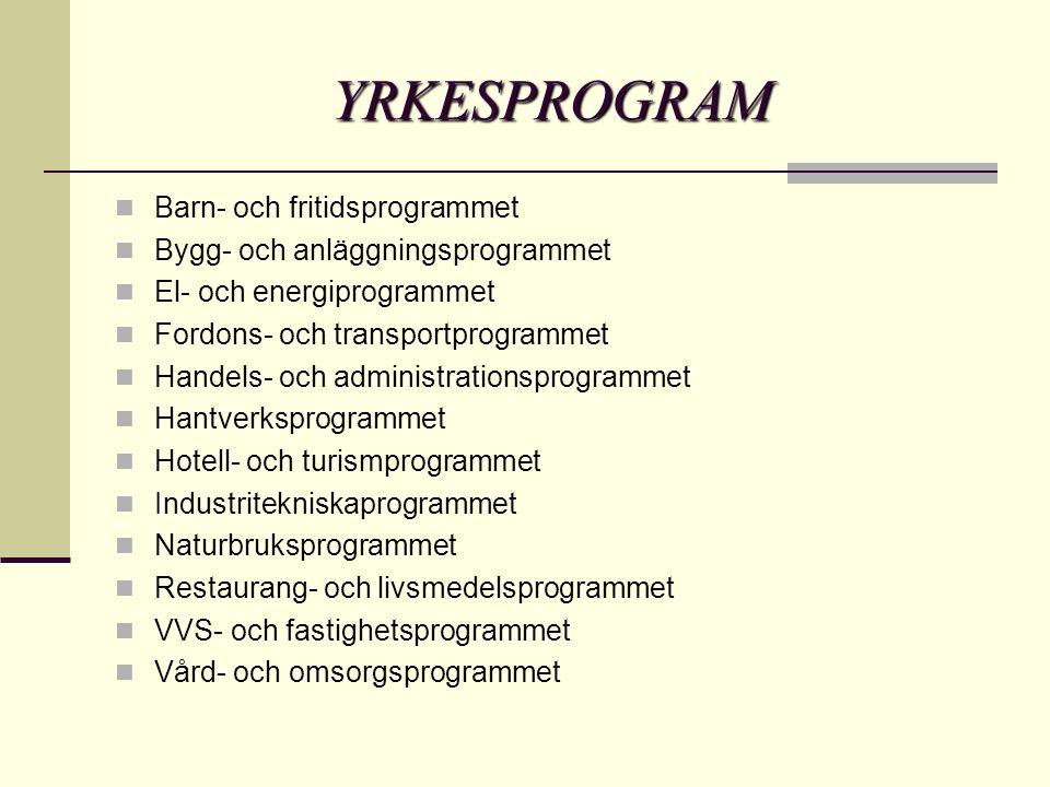YRKESPROGRAM Barn- och fritidsprogrammet Bygg- och anläggningsprogrammet El- och energiprogrammet Fordons- och transportprogrammet Handels- och administrationsprogrammet Hantverksprogrammet Hotell- och turismprogrammet Industritekniskaprogrammet Naturbruksprogrammet Restaurang- och livsmedelsprogrammet VVS- och fastighetsprogrammet Vård- och omsorgsprogrammet