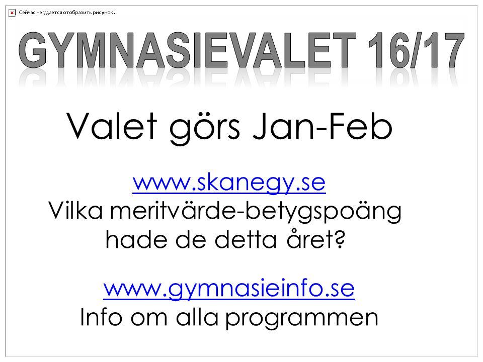 Valet görs Jan-Feb www.skanegy.se Vilka meritvärde-betygspoäng hade de detta året.