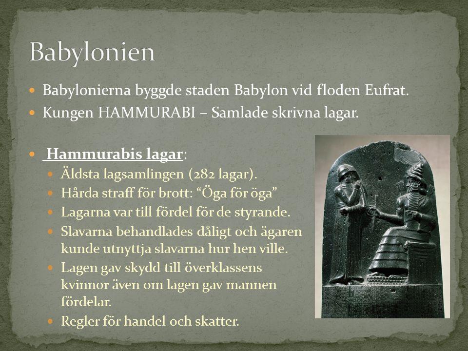 Babylonierna byggde staden Babylon vid floden Eufrat.