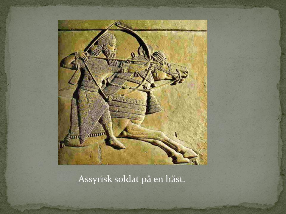 Assyrisk soldat på en häst.
