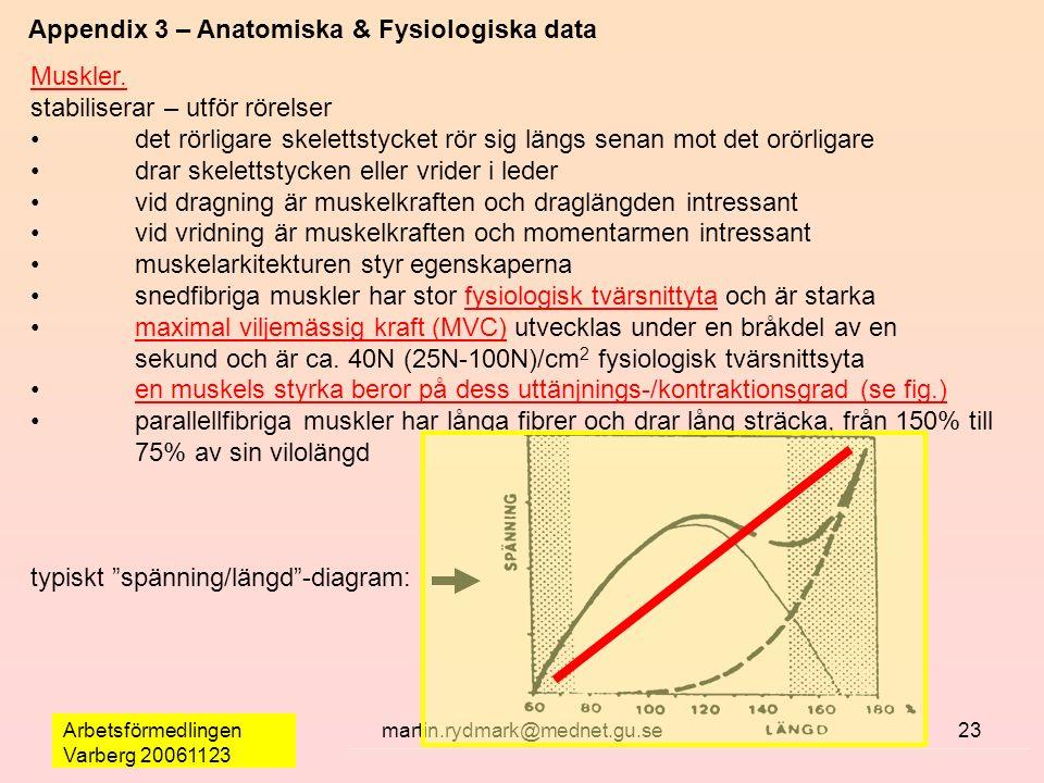 Arbetsförmedlingen Varberg 20061123 martin.rydmark@mednet.gu.se23 Appendix 3 – Anatomiska & Fysiologiska data Muskler. stabiliserar – utför rörelser d