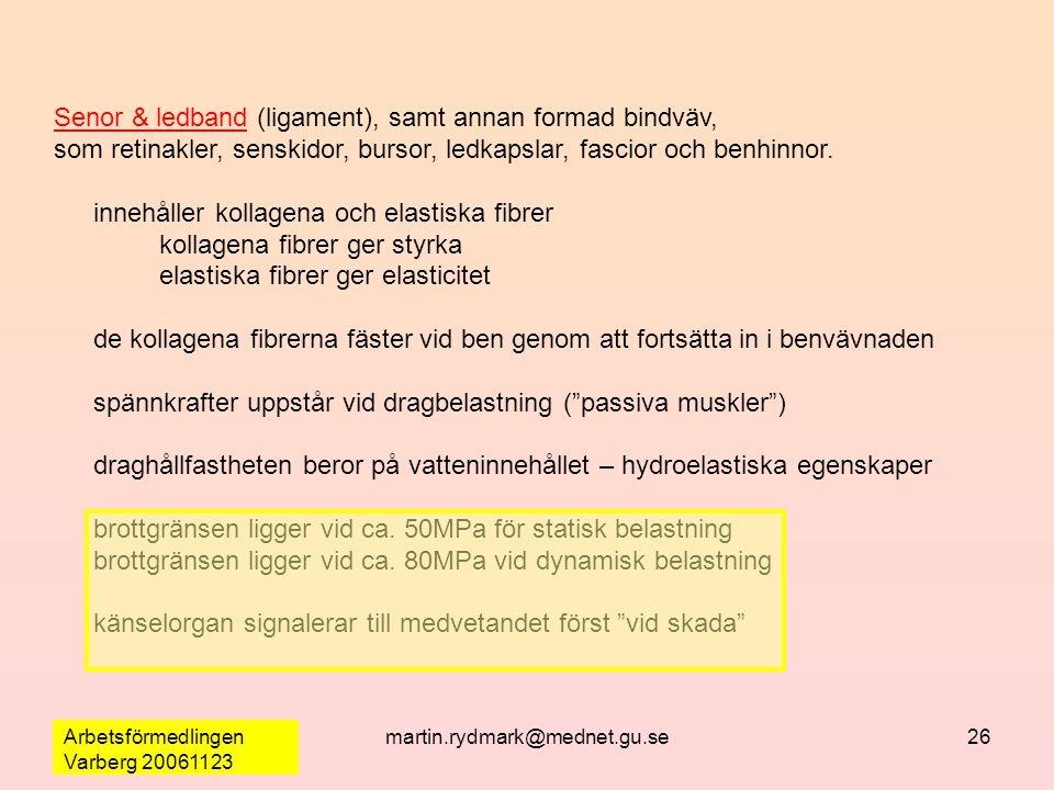 Arbetsförmedlingen Varberg 20061123 martin.rydmark@mednet.gu.se26 Senor & ledband (ligament), samt annan formad bindväv, som retinakler, senskidor, bursor, ledkapslar, fascior och benhinnor.