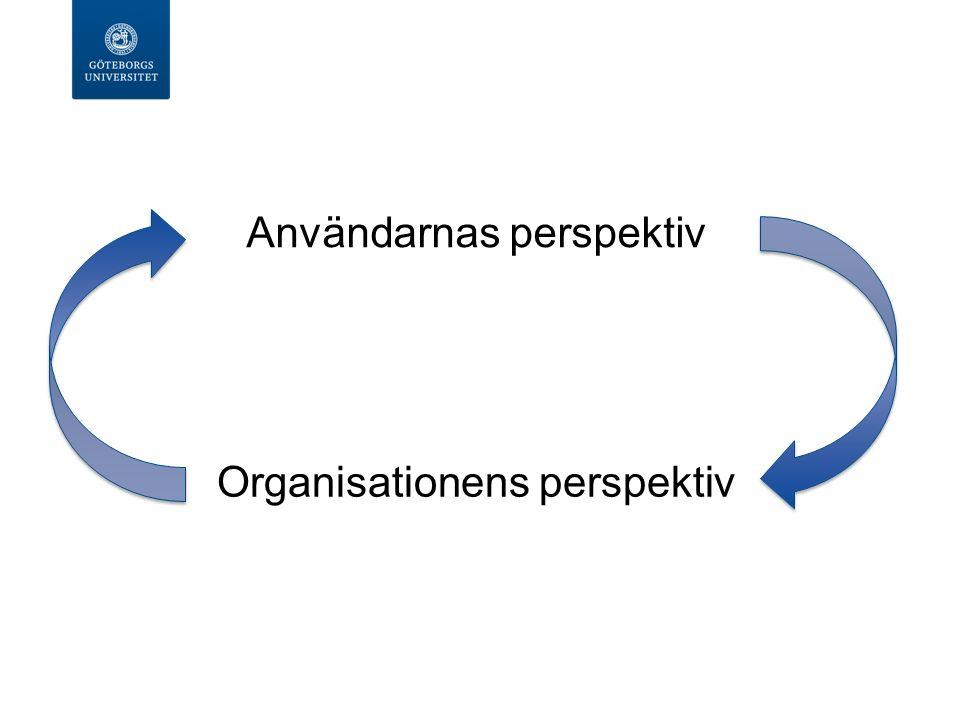 Organisationens perspektiv