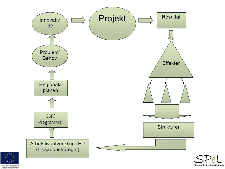 Problem/ Behov Innovativ idé Projekt Regionala planen ESF/ Programmål Arbetslivsutveckling i EU (Lissabonstrategin) Resultat Strukturer Effekter