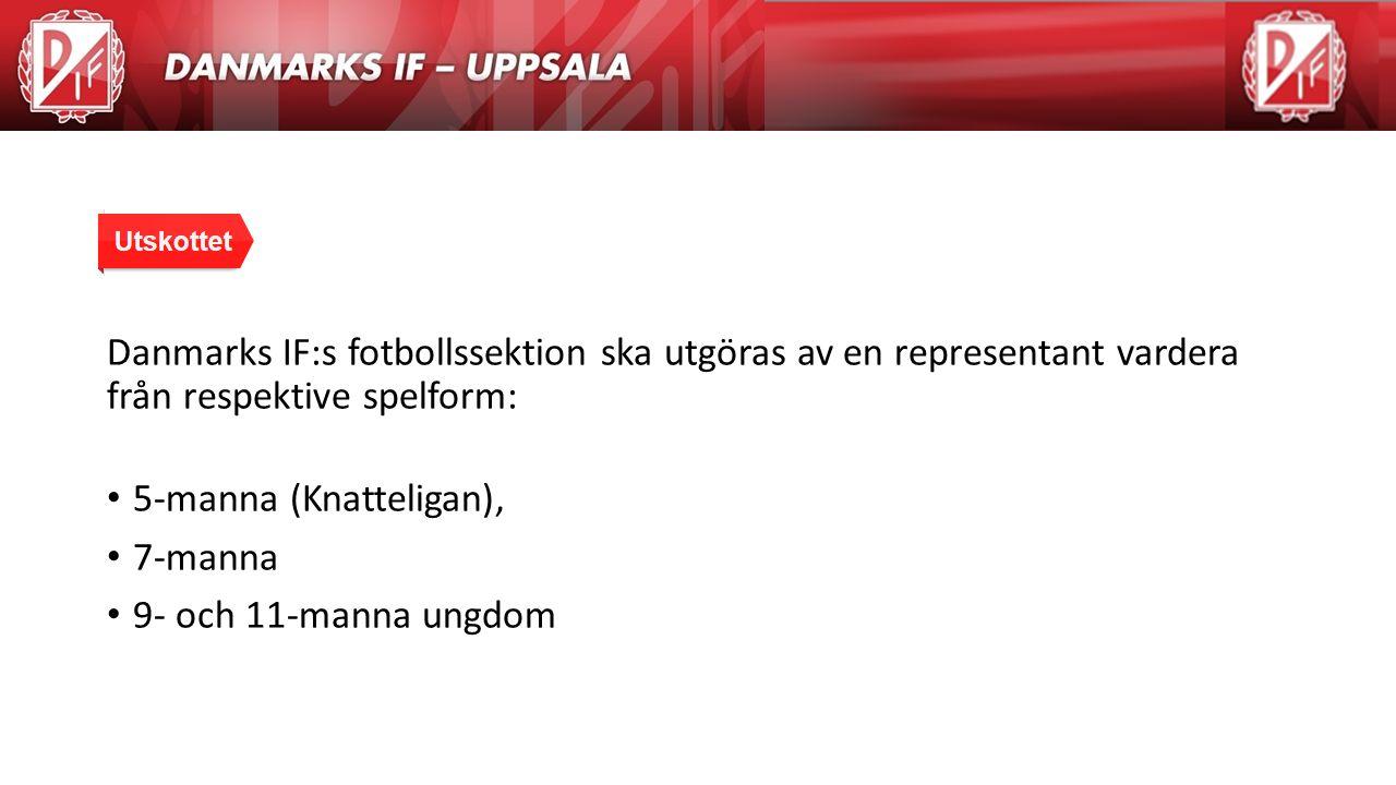 Agenda Danmarks IF:s fotbollssektion ska utgöras av en representant vardera från respektive spelform: 5-manna (Knatteligan), 7-manna 9- och 11-manna u