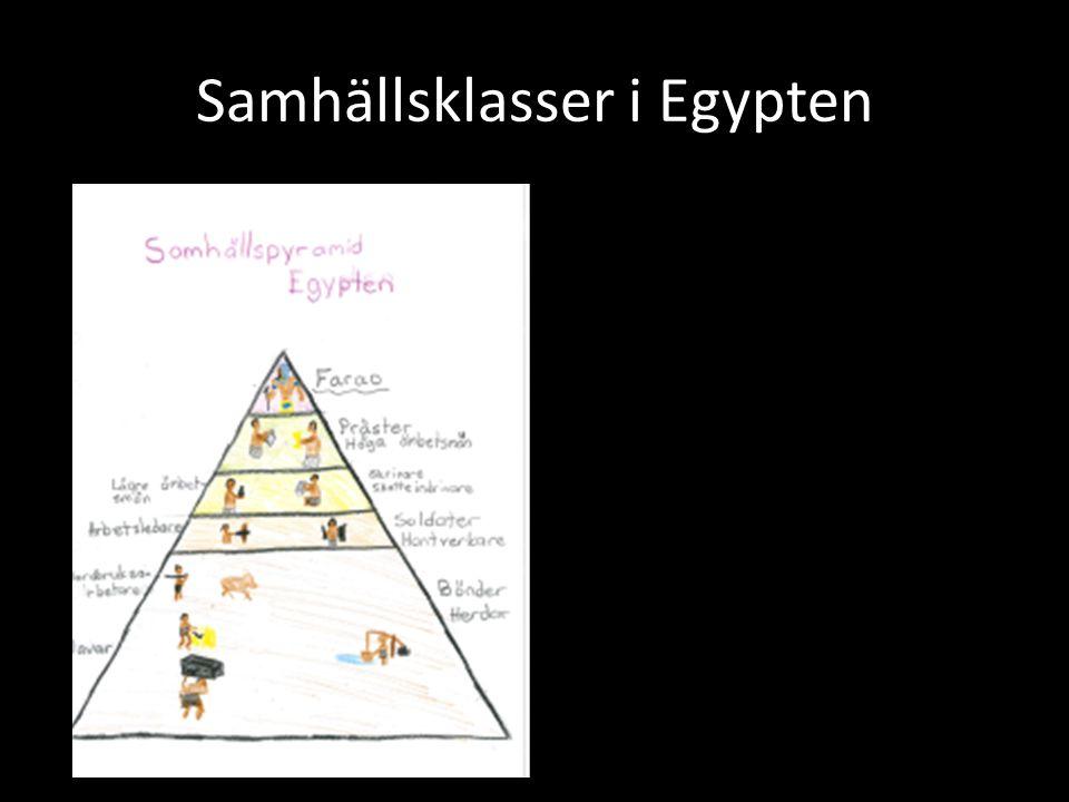 Samhällsklasser i Egypten