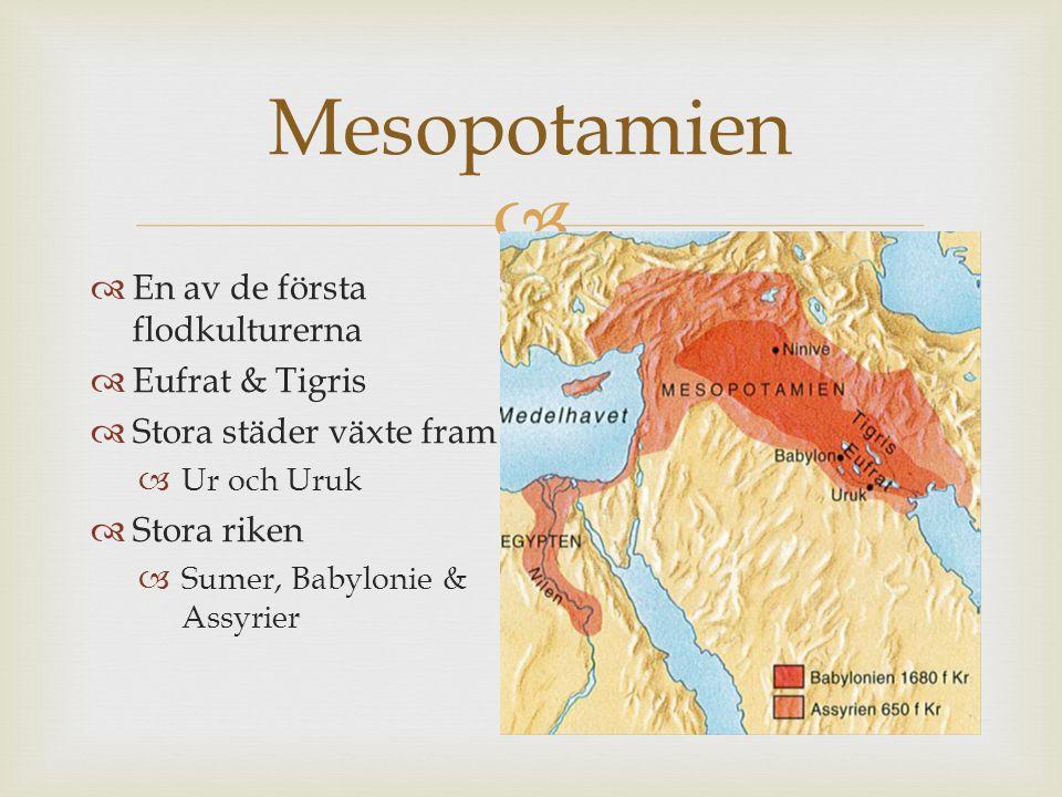  Mesopotamien  En av de första flodkulturerna  Eufrat & Tigris  Stora städer växte fram  Ur och Uruk  Stora riken  Sumer, Babylonie & Assyrier