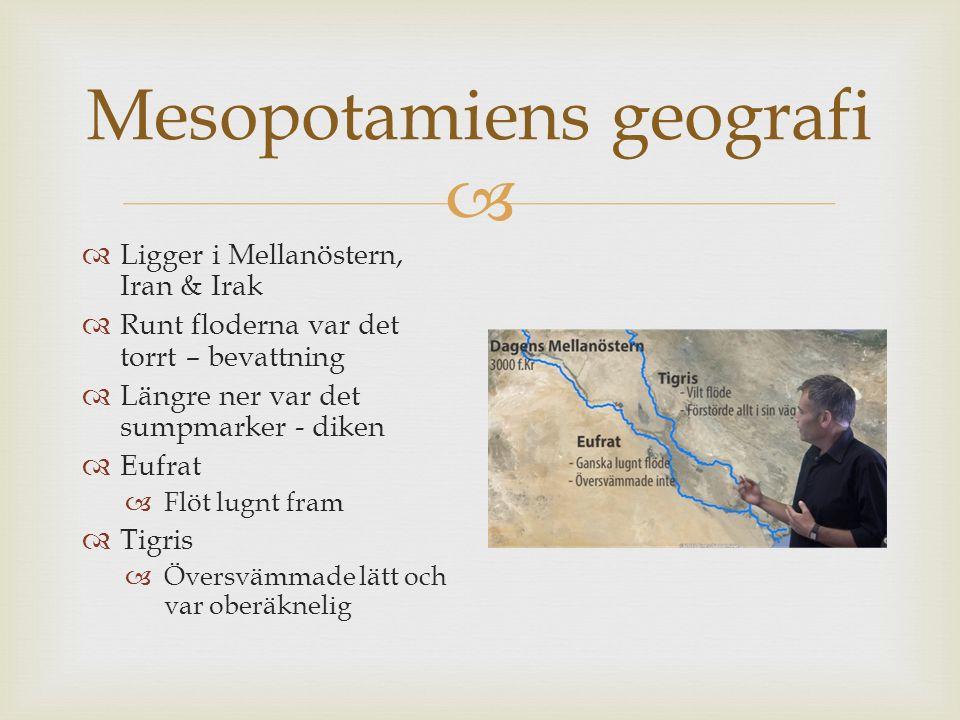  Mesopotamiens geografi  Ligger i Mellanöstern, Iran & Irak  Runt floderna var det torrt – bevattning  Längre ner var det sumpmarker - diken  Euf