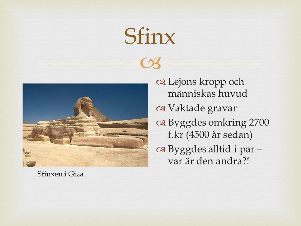  Sfinx  Lejons kropp och människas huvud  Vaktade gravar  Byggdes omkring 2700 f.kr (4500 år sedan)  Byggdes alltid i par – var är den andra?! Sf