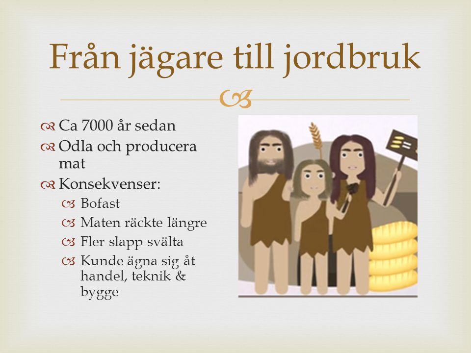  Från jägare till jordbruk  Ca 7000 år sedan  Odla och producera mat  Konsekvenser:  Bofast  Maten räckte längre  Fler slapp svälta  Kunde ägn