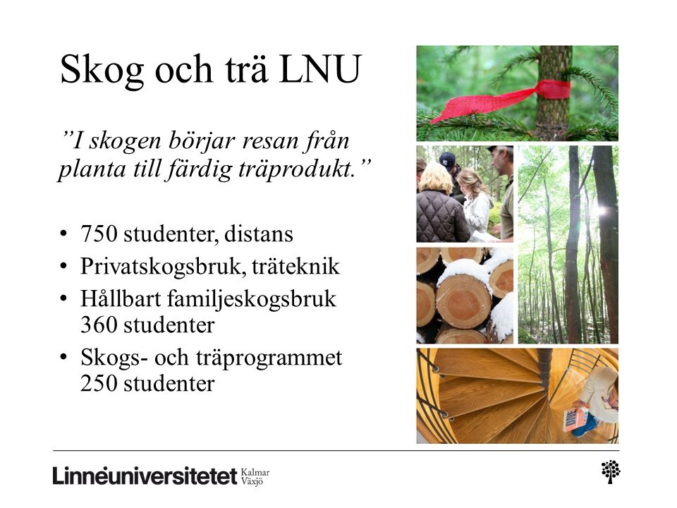 """Skog och trä LNU """"I skogen börjar resan från planta till färdig träprodukt."""" 750 studenter, distans Privatskogsbruk, träteknik Hållbart familjeskogsbr"""