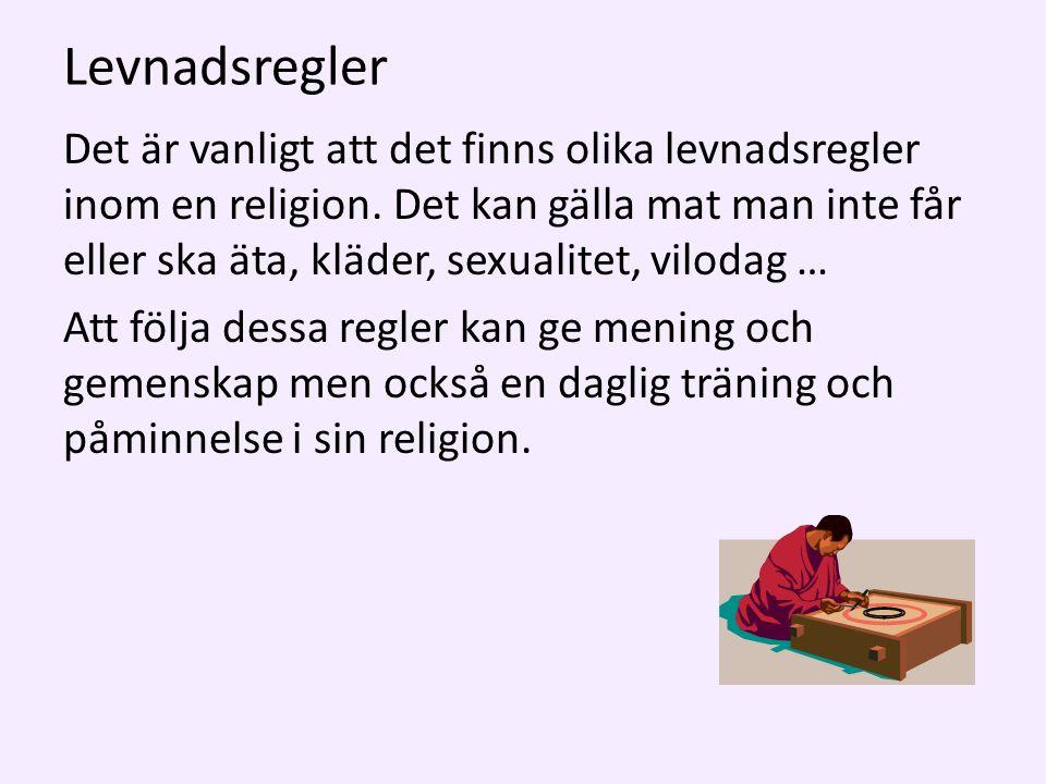 Levnadsregler Det är vanligt att det finns olika levnadsregler inom en religion.