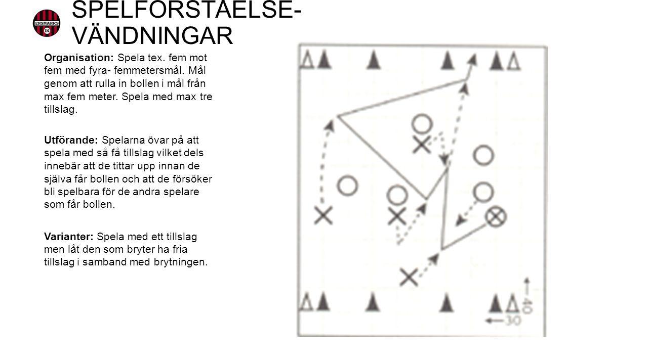 Organisation: Spela tex. fem mot fem med fyra- femmetersmål.