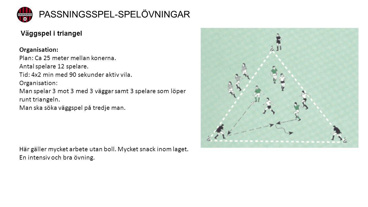 Väggspel i triangel Organisation: Plan: Ca 25 meter mellan konerna.