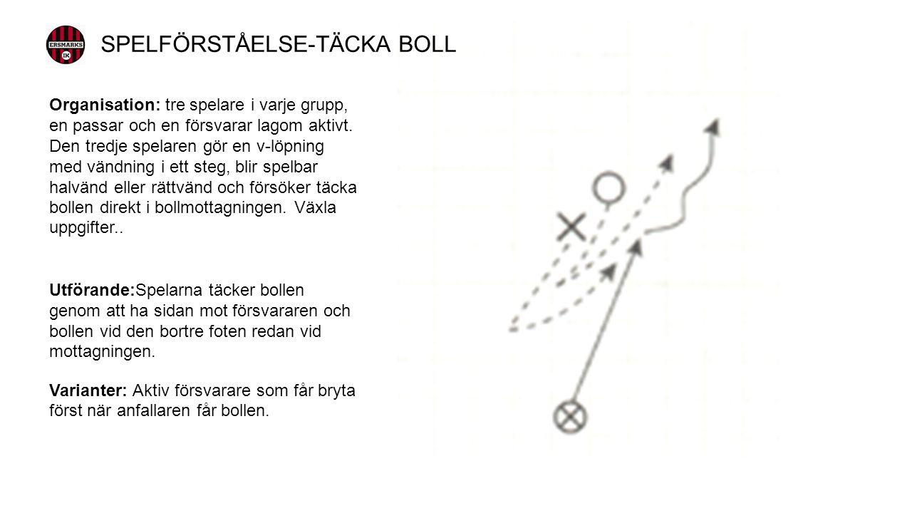 Organisation: Fyra spelare växlar parvis om att vända med bollen och att täcka den.