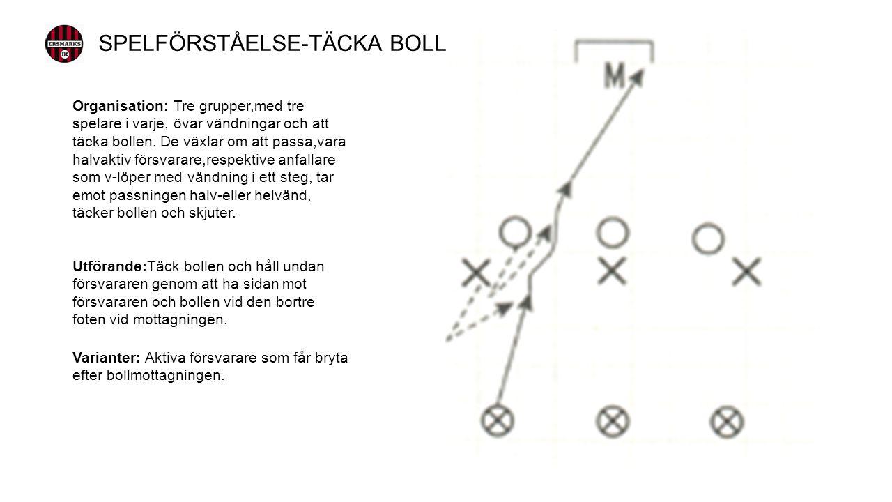 Organisation: Tre grupper,med tre spelare i varje, övar vändningar och att täcka bollen.