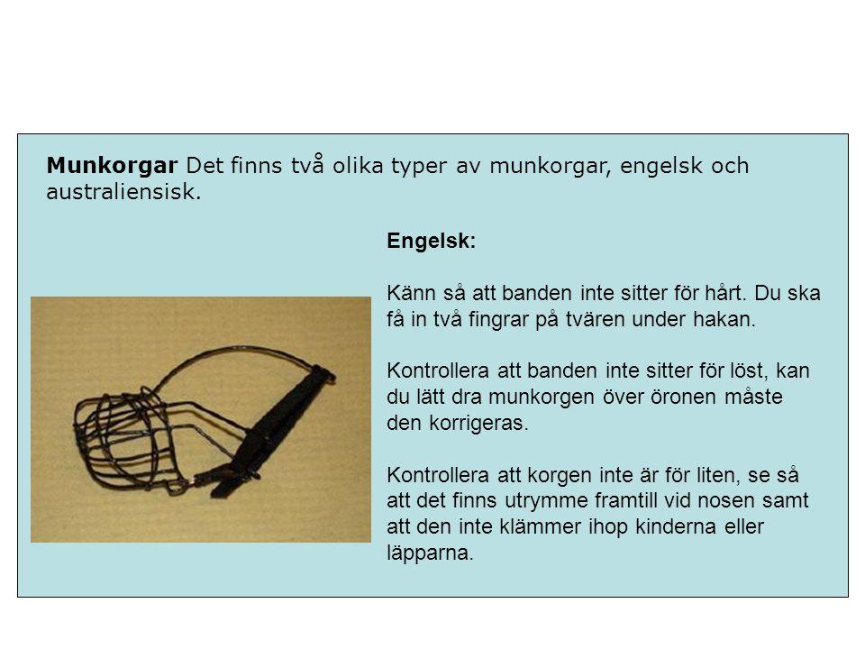 Munkorgar Det finns två olika typer av munkorgar, engelsk och australiensisk.