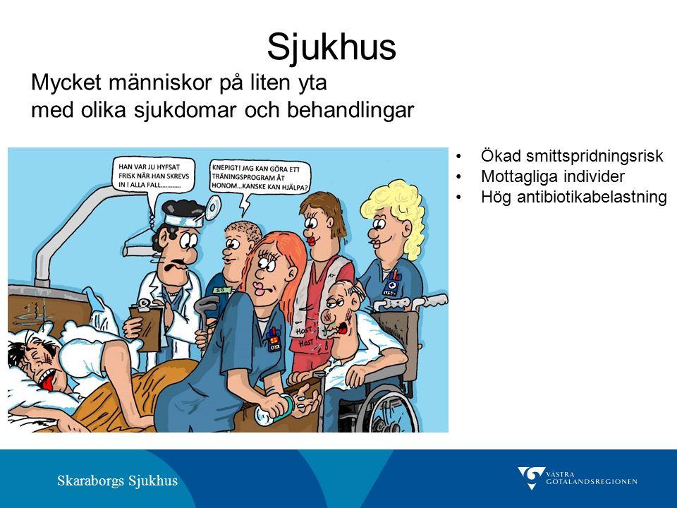 Skaraborgs Sjukhus Ökad smittspridningsrisk Mottagliga individer Hög antibiotikabelastning Sjukhus Mycket människor på liten yta med olika sjukdomar och behandlingar