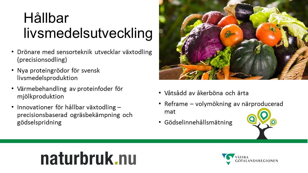 Hållbar livsmedelsutveckling Drönare med sensorteknik utvecklar växtodling (precisionsodling) Nya proteingrödor för svensk livsmedelsproduktion Värmebehandling av proteinfoder för mjölkproduktion Innovationer för hållbar växtodling – precisionsbaserad ogräsbekämpning och gödselspridning Våtsådd av åkerböna och ärta Reframe – volymökning av närproducerad mat Gödselinnehållsmätning