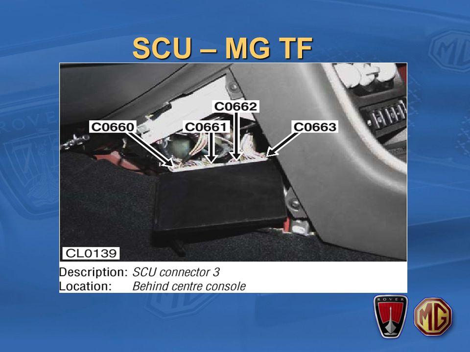SCU – MG TF