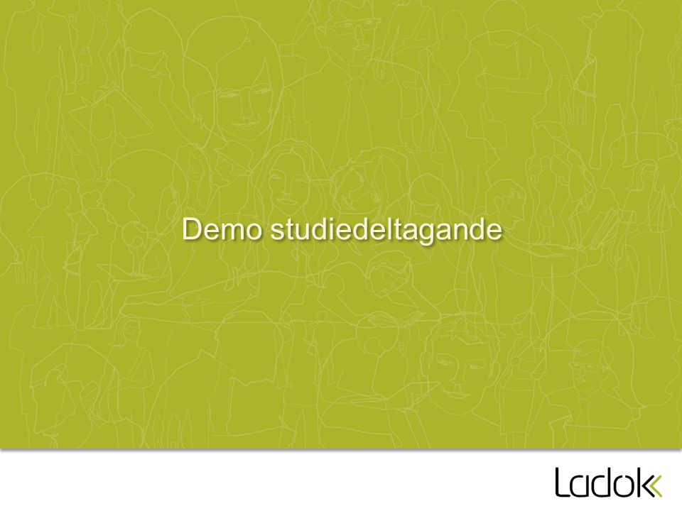 Demo studiedeltagande
