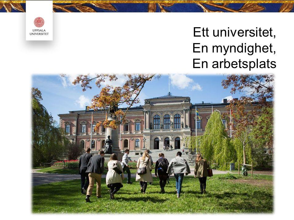 Ett universitet, En myndighet, En arbetsplats