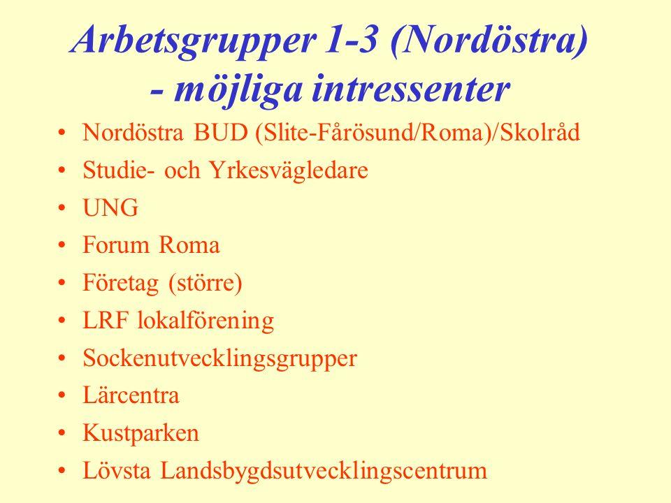 Arbetsgrupper 1-3 (Nordöstra) - möjliga intressenter Nordöstra BUD (Slite-Fårösund/Roma)/Skolråd Studie- och Yrkesvägledare UNG Forum Roma Företag (st