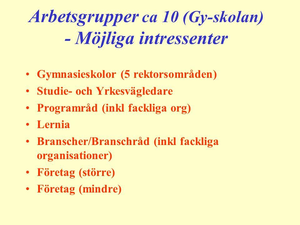 Arbetsgrupper ca 10 (Gy-skolan) - Möjliga intressenter Gymnasieskolor (5 rektorsområden) Studie- och Yrkesvägledare Programråd (inkl fackliga org) Lernia Branscher/Branschråd (inkl fackliga organisationer) Företag (större) Företag (mindre)