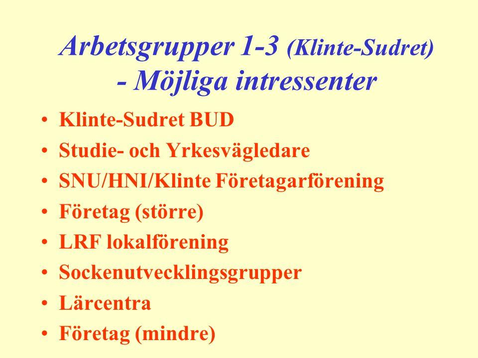 Arbetsgrupper 1-3 (Klinte-Sudret) - Möjliga intressenter Klinte-Sudret BUD Studie- och Yrkesvägledare SNU/HNI/Klinte Företagarförening Företag (större