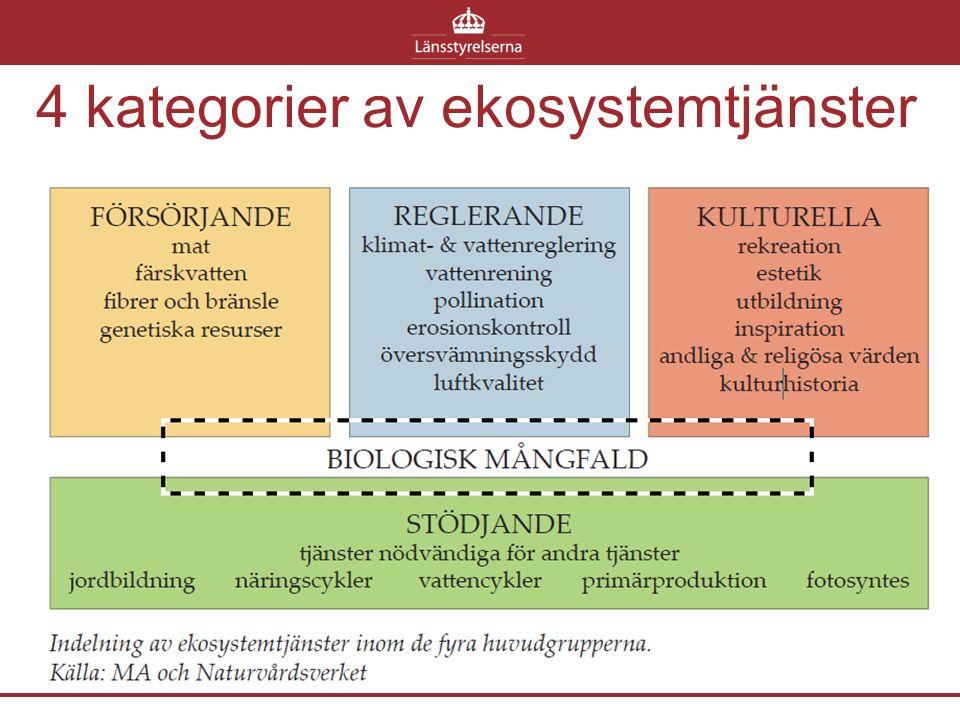 4 kategorier av ekosystemtjänster