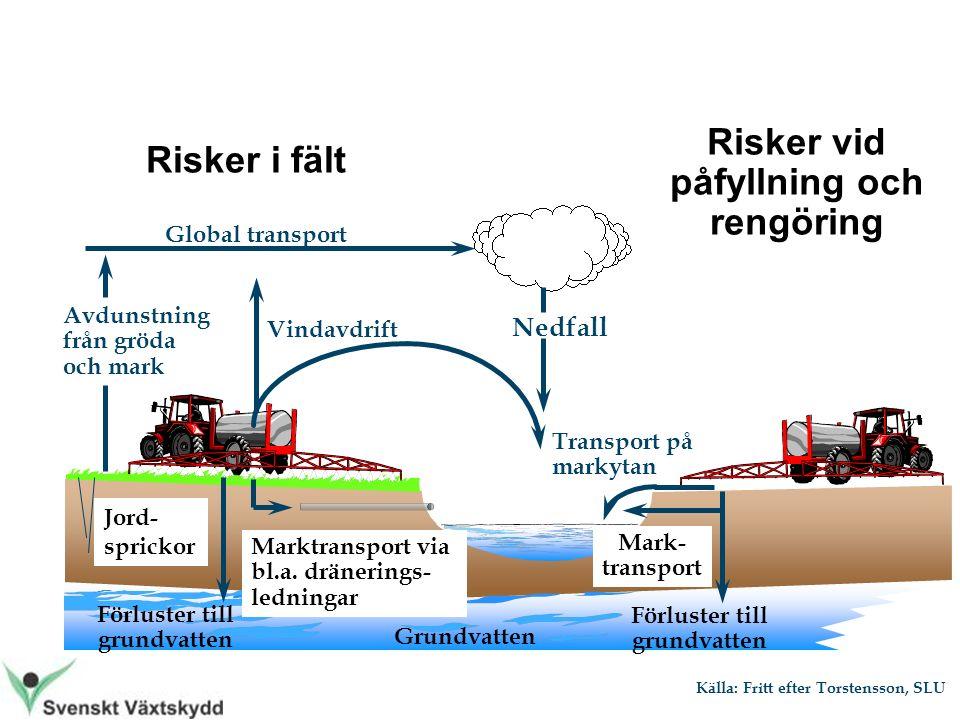 Grundvatten Risker vid påfyllning och rengöring Mark- transport Förluster till grundvatten Transport på markytan Risker i fält Marktransport via bl.a.